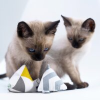 Mini Pyramid Set Scandi Design
